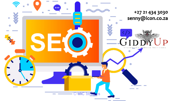 Professional SEO Services Cape Town